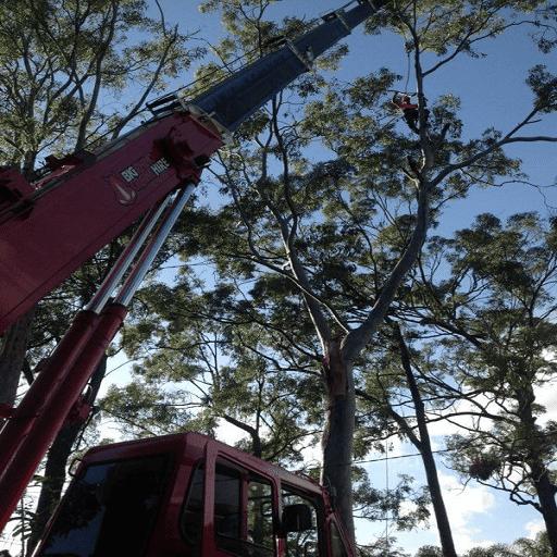 city crane trucks